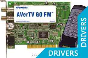 ��-����� AverMedia AVerTV GO/FM