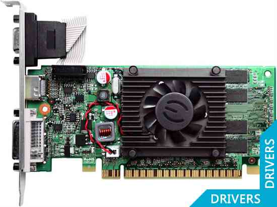 ���������� EVGA GeForce 210 512MB DDR3 (512-P3-1310-LR)