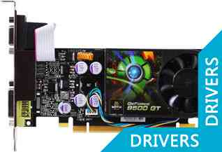 ���������� XFX GeForce 9500 GT 1024MB (PV-T95G-ZAFG)